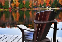 Fall/ Thanksgiving / by Kathy Powell