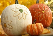 Autumn / by Melissa Ringstaff {AVirtuousWoman.org}