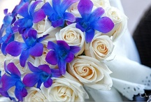 Bouquets / by Cabo Wedding Services