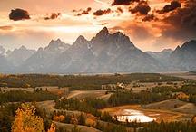 WHAT A BEAUTIFUL WORLD ... / by Faye Cox