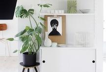 *Indoor garden* / #garden #terrariums #topiaries / by Carrol Luna