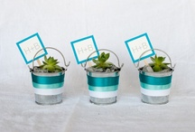 Modern Wedding // Favors / by Kate Myhre // Modernly Wed