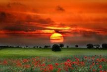 God's beauty / by Beth Coward