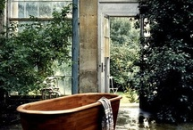 Lovely Bathrooms / by Vanessa King