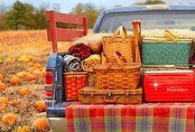 Party + picnics / by Cris