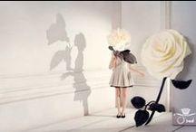 Inspirations / by Ohta Yusuke