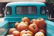 Fall into Autumn / by TheOriginalPrep