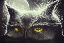 Owl / Sowy / by Deni