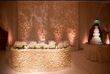 Fancy That! Event Design and Coordination / by Revelry Event Designers