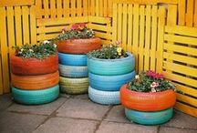 Outdoor Curb Appeal / by Alise Houpt