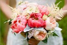 Bouquet Blooms / by Little Borrowed Dress