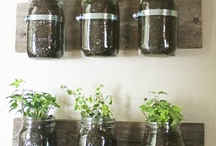 Canning Jar~Creative Uses   / by DeeDee Shore