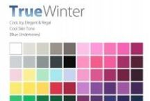 THE True Winter Color Analysis / This Personal #Color Analysis palatte is cool, icy & regal with cool hue, medium value and meduim to bright chroma. Contact certified color #analyst Lisa K. Ford at www.inventyourimage.com or 813-766-8375. / by Invent Your Image by Lisa K. Ford