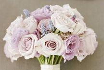 Wedding Planning / July 11th 2015 / by Hilary Peirce