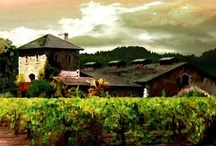 The Winery / by V. Sattui Winery