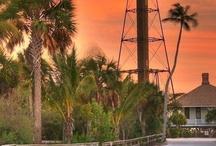 Destination Wedding! Sanibel Island!!! / by Kelly Kersey
