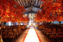 Aisle Style  / by viva bella events