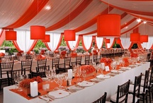 """Fabulously Fun"" Reception  / by viva bella events"