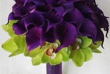 Flowers / by Julie Oberts