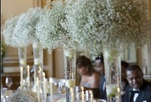 *classy tablescapes* / by Raissa Ng