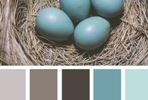 paint color samples / by Hope Davidson
