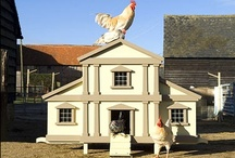 Chickens and Coops / by Equine Facility Design