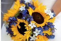 mkc. bouquets / any bouquet or flower arrangement held in your hand.  / by Katie Carroll Bowlick