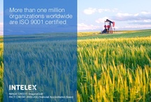 Did You Know? / by Intelex Technologies