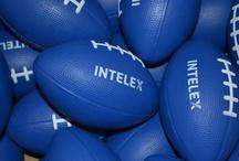 Intelex Swag / by Intelex Technologies