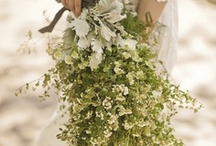 Wedding Flowers / by Fräulein C.