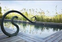 Pool Love / by Norma de Langen | Daisy Loves Design