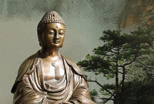 Buddhas where I find them / by Beatricia Sagar
