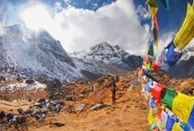 Asia: Top 25 Things to Do  / Part of our annual Viator Travel Awards! Read more on our blog: http://travelblog.viator.com/top-25-things-to-do-in-asia-2/ / by Viator.com