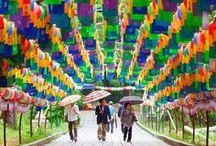 Umbrellas & Lanterns   ☂ / by Granny Pat