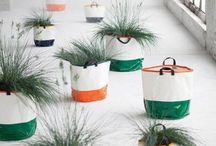 INTERIOR PLANTS / by Trendland