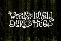 The Woods are Lovely, Dark & Deep / by Miranda Sundquist