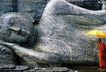Polonnaruwa / Polonnaruwa (Sinhalese - පොළොන්නරුව Tamil - பொலநறுவை or புளத்தி நகரம் as called by Cholas) is a town. It's the main town of Polonnaruwa District in the North Central Province, Sri Lanka. Kaduruwela area is the Polonnaruwa New Town and the other part of Polonnaruwa, remains as the royal ancient city of polonnaru kingdom. (from Wikipedia) / by Secret Lanka