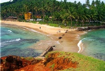 Mirissa / Located on the South coast of Sri Lanka and in proximity with Galle, Mirissa is a sea location with wonderful beaches, surfing spots and the starting point for whales watching expeditions. / by Secret Lanka