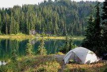 Travel: Camping / by Katrin Sticha