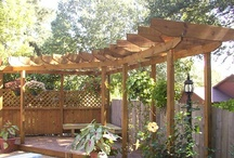 Backyard Landscaping / by Janet Revell-Williams
