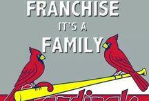 Cardinals!! / by Teresa Gilliam