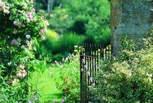 Gardens for my soul... / Beautiful, beautiful, beautiful / by Pattie Kahla Price