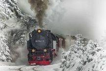 Winter / by Merilee Ray