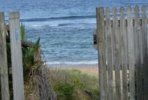 beaches and oceans / by Doris Parton