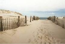 ᑕOᗩᔕTᗩᒪ / Coastal Inspirations   / by Gina Hudson