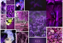 ♦♦ Purplish Sensation ♦♦ / ⌘⌘ ℙυя℘ℓ℮ ℕα☂їøη ⌘⌘ For those who fall in love with purple. You can pin all of your purple things here. And let this board could give us a release for our passion of purple. Let's enjoy and share our purple things here, brother/sister! And please pin only purple things :) Happy Pinning guys!!.. ヅ / by Daniel Wiyata