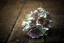 Wedding Ideas / by debs
