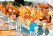 Jenny's Wedding  / Fun DIY wedding ideas all in one place! / by Ashley's Dandelion Wishes