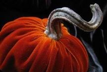 """Fall Dreams / """"Delicious autumn! My very soul is wedded to it, and if I were a bird I would fly about the earth seeking the successive autumns."""" - George Eliot / by Rachel Nigh"""