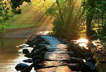 Pathways, Steps, Trails & Roads / by Leona Eunice Gentry